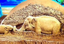 Photo of Odisha: Stunning Sand Sculpture By Sudarsan Pattnaik To Commemorate World Elephant Day