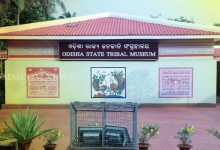 Photo of Odisha State Tribal Museum Goes Virtual