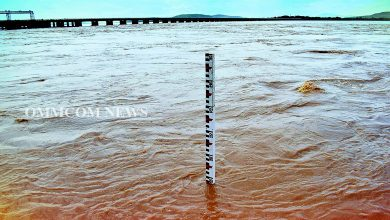 Photo of No Flood Situation In Odisha Rivers, Except Jalaka: Chief Engineer Water Resources