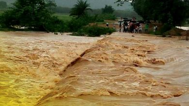 Photo of Odisha officials asked to remain alert for flood-like situation