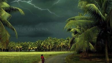 Photo of Rain & Thundershower In South Odisha Dists In Next 24 Hrs: IMD