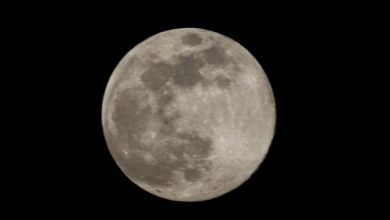 Photo of Nokia Wins NASA Contract To Put 4G Network On Moon