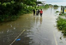 Photo of Centre To Set Up Team To Assess Rain Damage In Andhra