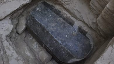 Photo of Pharaonic Tomb Unearthed In Egypt
