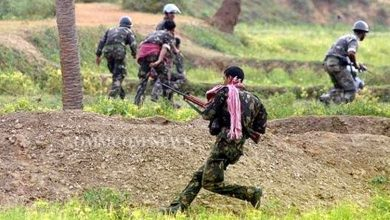 Photo of Maoists-Security Force Exchange Fire In Odisha-Andhra Border Forest