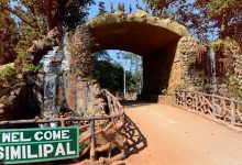 Photo of Similipal National Park To Reopen For Tourists From Nov 1