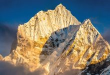 Photo of Stephen Alter's 'Wild Himalaya' Wins Environmental Award At Canadian Festival