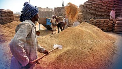 Photo of Farmers Show Confidence In Paddy Procurement Process, Registration Increases By 24%