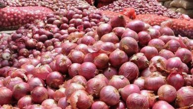 Photo of India Bans Exports Of Onion Seeds