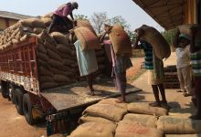 Photo of Govt Buys Over 197 Tonnes Of Paddy From Farmers Till Oct 30