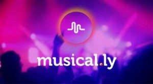 Musically For PC features