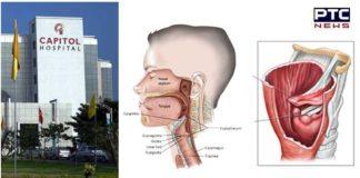 Laryngeal