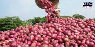 onion news