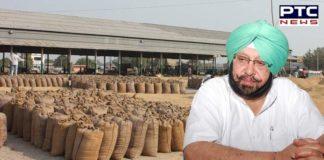 CM reviews wheat procurement operations