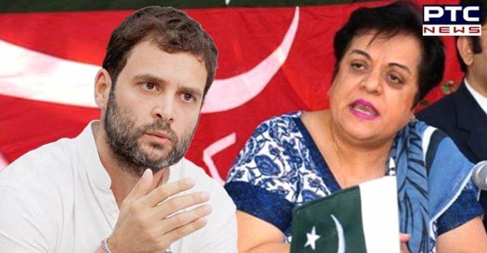 Kashmir is India's internal issue: Rahul Gandhi's befitting reply to Pakistan