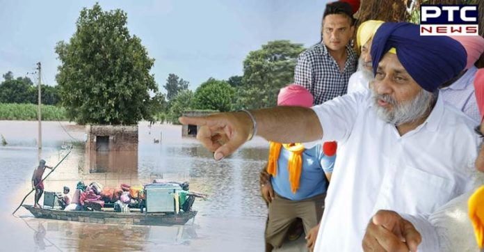Punjab Floods: SAD Chief Sukhbir Singh Badal visits Sultanpur Lodhi to inspect the flood-affected areas