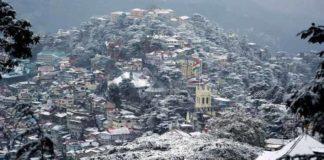 Shimla 1 (1)