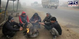 Cold wave conditions intensify in Punjab, Haryana and Chandigarh
