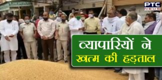 Wheat Procurement Started in Fatehabad | Haryana News
