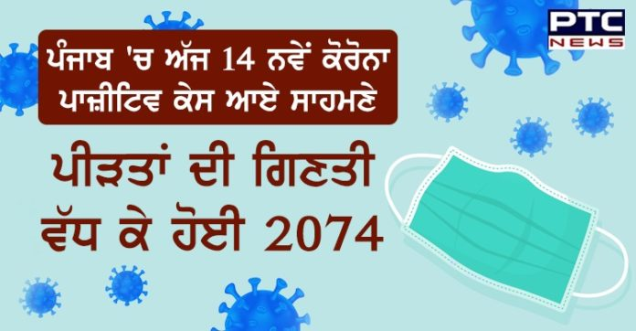 Punjab reports 14 new Covid-19 cases; state count rises to 2074