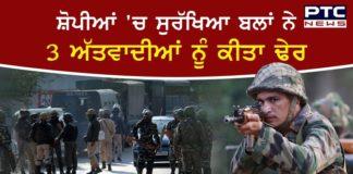 3 Terrorists Killed In Encounter In Jammu And Kashmir's Shopian