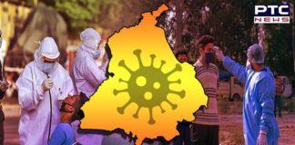 Coronavirus Punjab New Cases and Death Toll   Amritsar, Jalandhar, Ludhiana