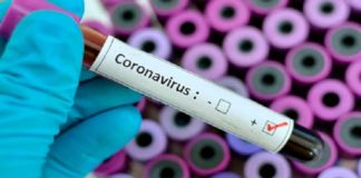Corona Cases in India |Coronavirus India | Hindi News