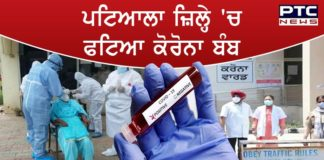 Coronavirus Patiala : : 19 more new corona cases in Patiala