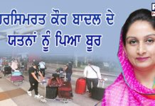 Harsimrat Kaur Badal efforts 120 Punjabi youth return Punjab