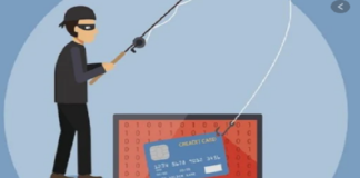 Haryana Police caution people against phishing emails