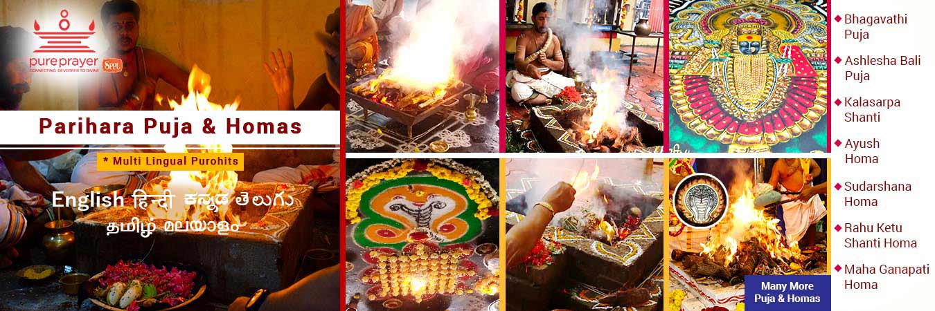 Online Pujas and Homas, Purahit Services