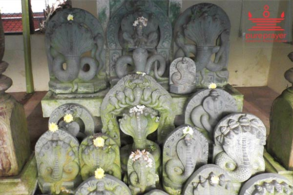 Book And Perform Naga Pratishte with Vedic Pandits from PurePrayer in Udupi Kshetra