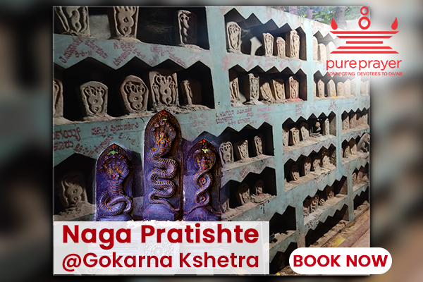 Book And Perform Naga Pratishte with Vedic Pandits from PurePrayer in Gokarna Kshetra