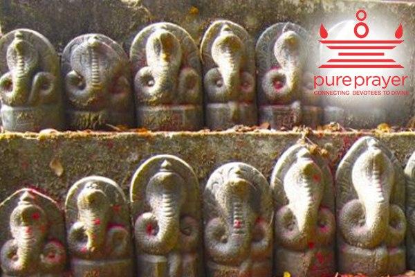 Perform Naga Pratishtha for happy family and children for