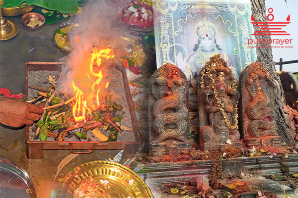 Kala Sarpa Shanti Puja at Trimbakeshwar