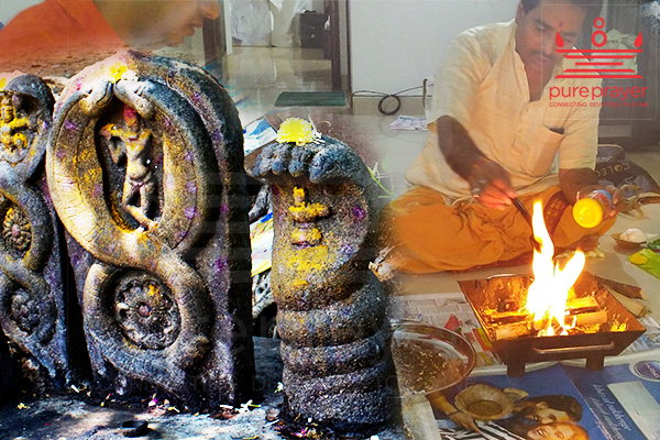 Pureprayer provides bookings for best Vedic Pandits and Kshetras to perform Kala Sarpa Shanti Pujaorm