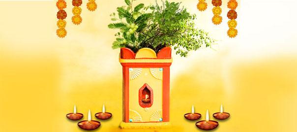 Utthana Dwadashi Celebraions
