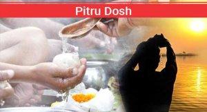 Best Astrologer Pitru Dosh