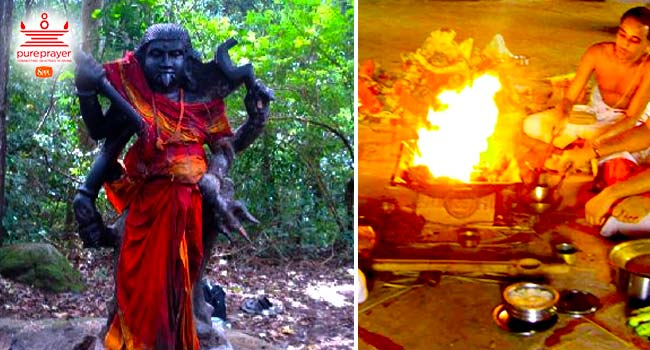 Perform Vanadurga Homa in Kshetras to seek protection from dark negative forces and progress in life.