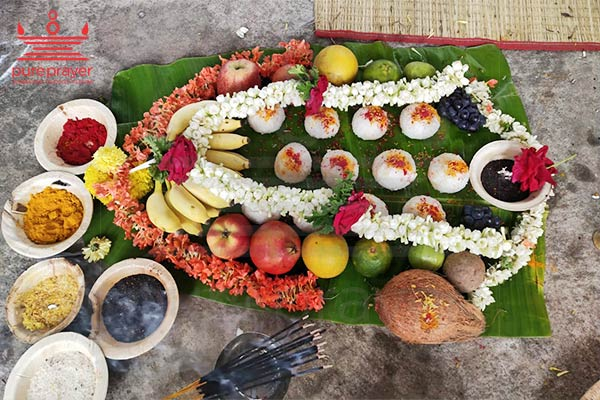Pureprayer - Narayanabali Puja