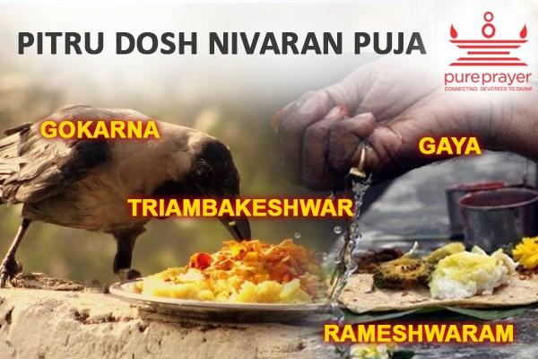 Book and perform Pitru Dosh Nivaran Pujas with best experienced and Vedic Pandits from PurePrayer in important Kshetras