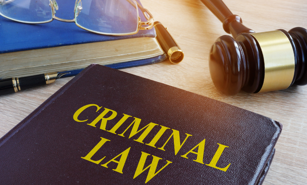 MINDS AND CRIMES: STUDYING THE LAW AND MIND BEHIND A CRIME