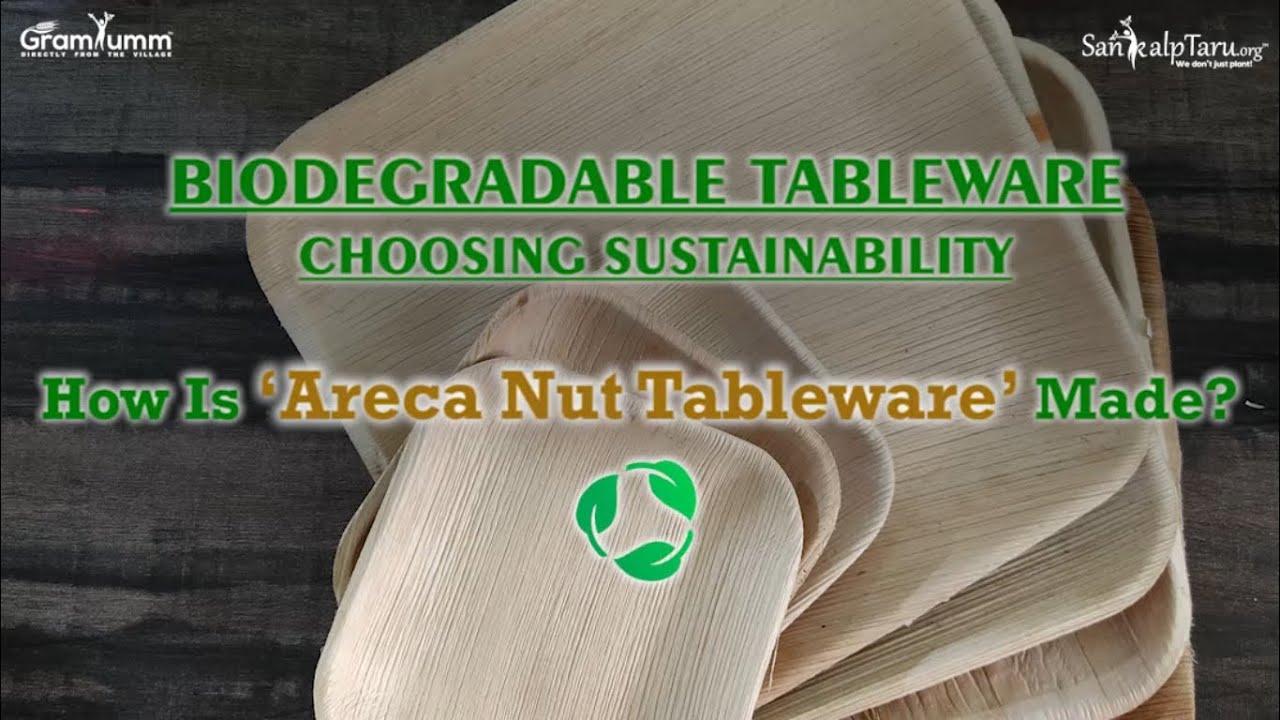 CHOOSING SUSTAINABILITY WITH ARECANUT TABLEWARE | SANKALPTARU FOUNDATION