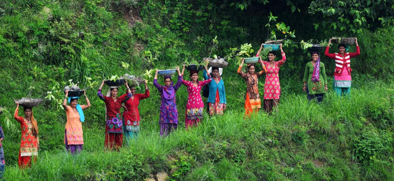 Financial Freedom of Women Farmers