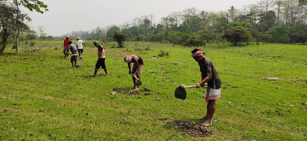 Kheojia-Assam-5