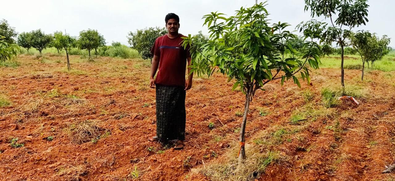 Green-Deccan-1