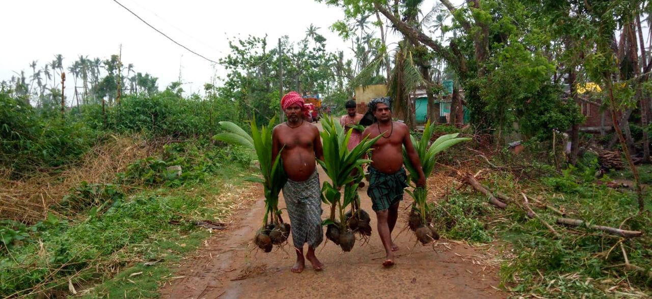 Odisha-4