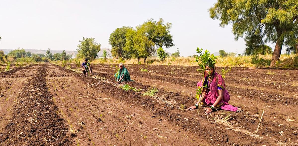 Helping Women Farmers!