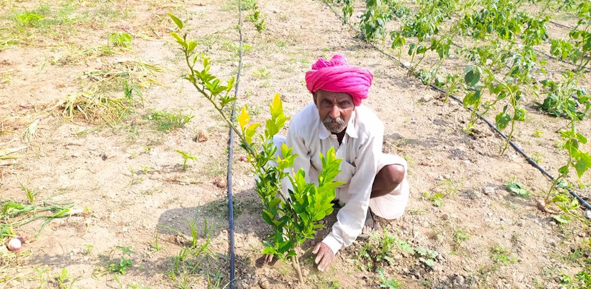 Uplifting Rural Livelihoods!