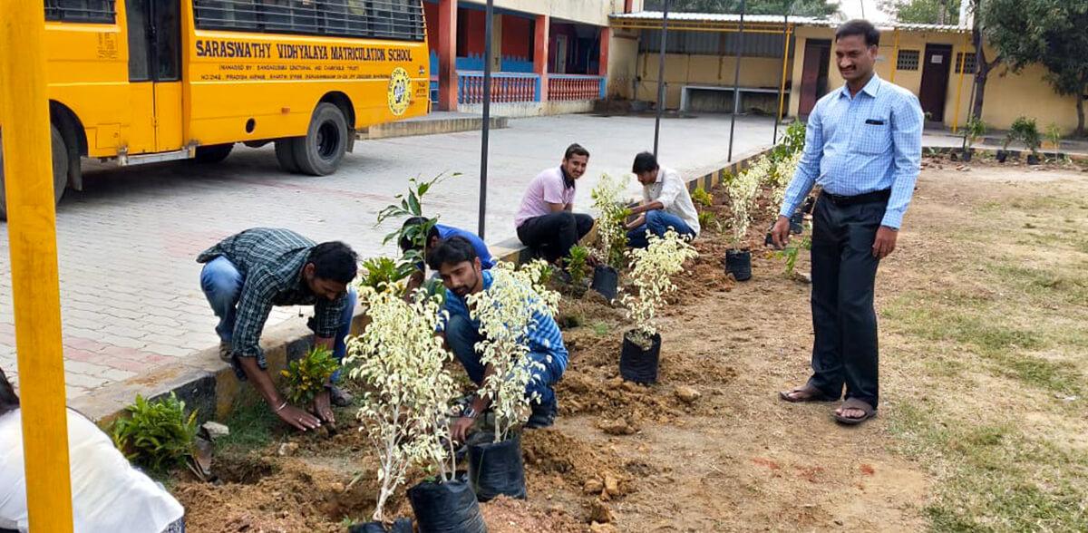 Greenifying School Campuses